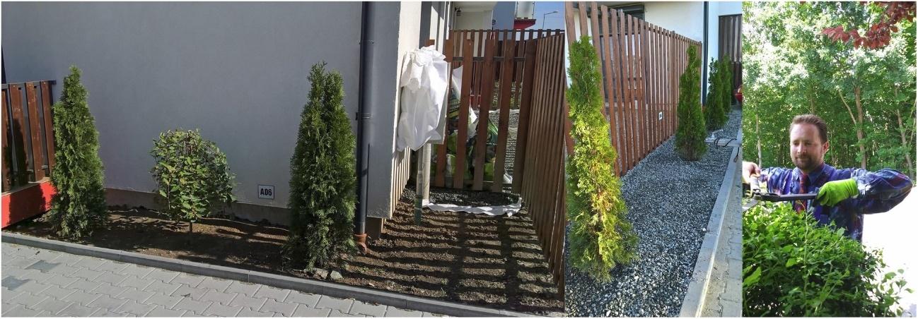 amenajari gradini spatii verzi sibiu