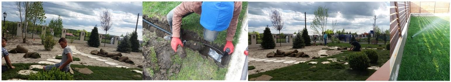 amenajari gradini spatii verzi sector 4 bucuresti